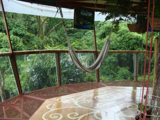 Nature Observatorio Treehouse, Manzanillo