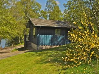 Pine Lodge + Sauna - Jane, Crieff