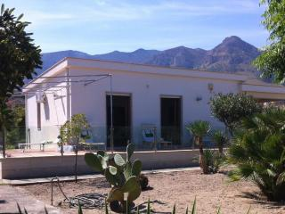 Surrounding the Villa is a beautiful garden of 1000 mg with an array of local flora.