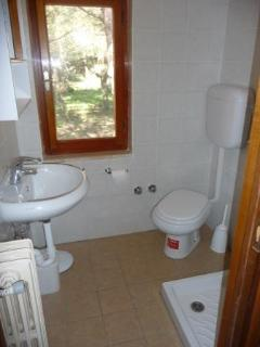 Window in the bathroom