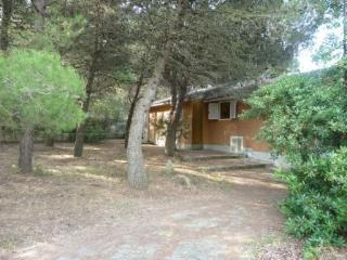 3 bedroom villa on beautiful Elba Island, privae terrace and garden, sleeps 8