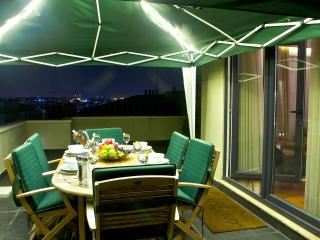 3BR, 2BA Apt w Private Terrace, Estambul