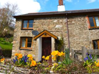 Snowdrop Cottage, Exford