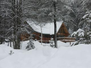 Awesome Adirondack Log Cabin 11 miles north of Lake George .