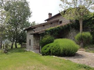 Borgo Corsignano - Volpe