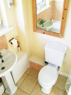 Bathroom with WC and basin