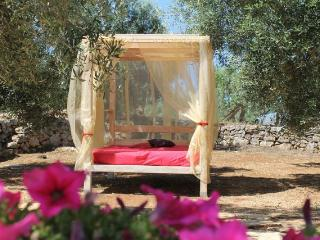 Relax in the shade of the olive trees