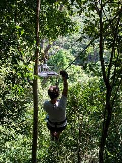 harry on a zipwire in the jungle canopy