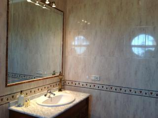 Master bathroom with shower, bath, bidet, vanity unit and mirror
