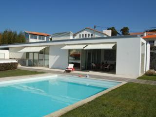 Pool (10 x 5m; 1 – 1,5m depth) & Villa