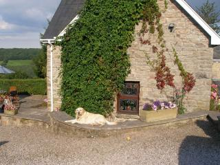 It is doggy heaven here, with paths leading from the door and the pub is a short stroll away