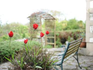 Parc Newydd Cottages, Llannerch-y-medd