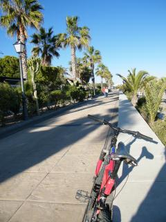 Biking along the promenade is a great way to get around