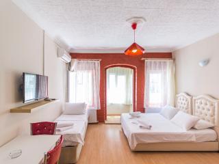Studio Flat Near Istiklal Avenue Taksim - 123