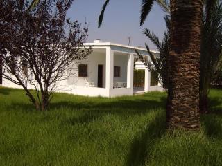 Magnifica Casa con 700 m de jardín Tropical, Oliva