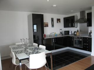 Modern 3 bedroom apartment in London, Londres
