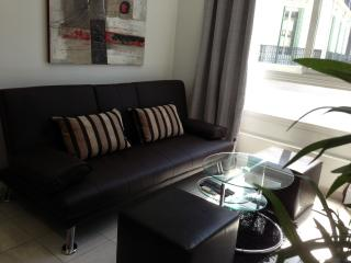 Mimosa apartment next to Rue D'Antibes, Cannes