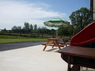 Super Private Spacious Vacation Home with all weather Hot Tub Tipperary Ireland.