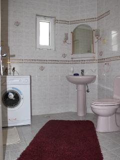 Bathroom - toilet and lavabo and washing machine
