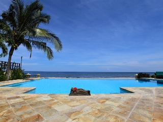Swimmingpool of villa Bunga Melati