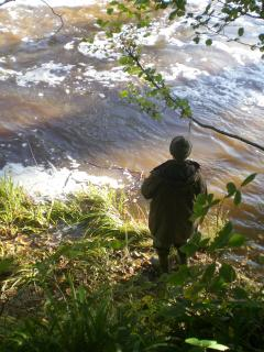 Fishing for Salmon on the River Esk at the bottom of our garden