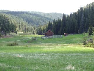 LONE SPRUCE RANCH, Rochford