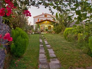 Villa Eleutheria, Beach, Pool & jacuzzi!
