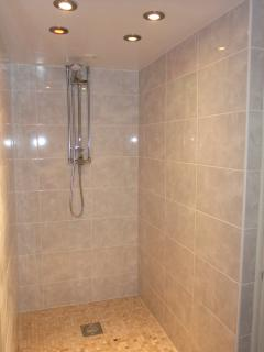 Second Walk-In Shower