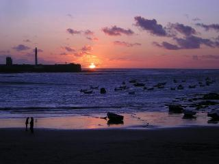 Near Caleta Beach, Free Wi-Fi, Local Neighborhood