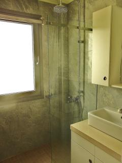 luxurious walk-in shower room