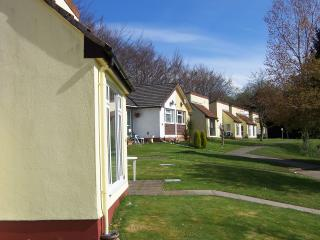 Tamar View Cottage, Callington