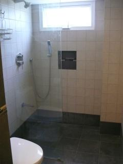 Walk in 3 way shower