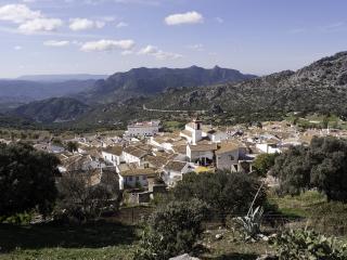 EL NOGAL ( BENAOCAZ )