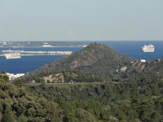 View from house to Cannes and cruise ships port