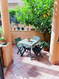 Private garden with nice dining set