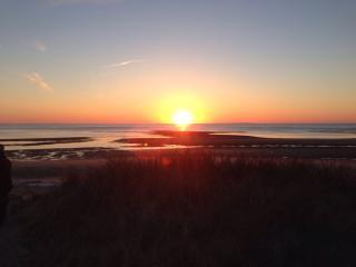 Stunning and peaceful, paradise found!, Wellfleet