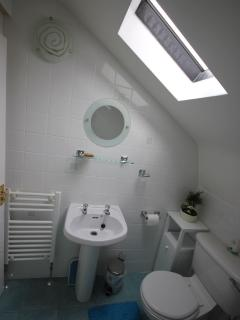 Bathroom (bath and shower), not as small as the photo might suggest!