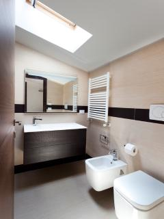 Attic shower room