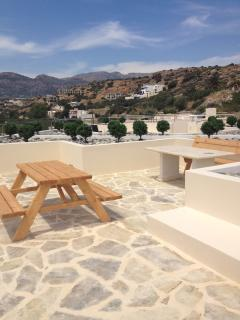 Roof terrace and Garden