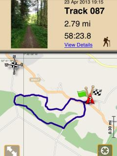 Suggested walk, right from the door, via the bluebells on Bank Top road.