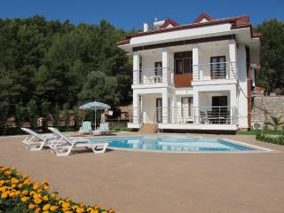 Joy Lettings Villa LMP1, Hisaronu