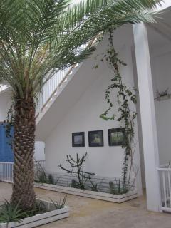 Casa Velha Courtyard