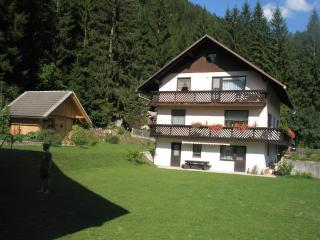 Ratece Planica-apartment Mertelj with one bedroom
