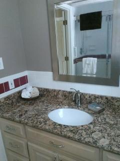 Guest bath on main level has tile shower and granite countertops.
