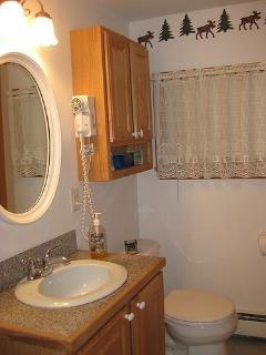 Bathroom with tub and shower on opposite wall