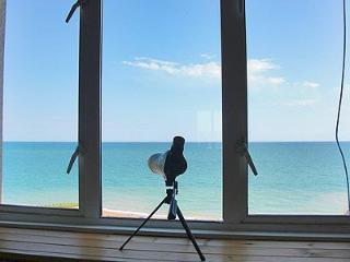 Seaside, a beautiful beachfront apartment, Hastings