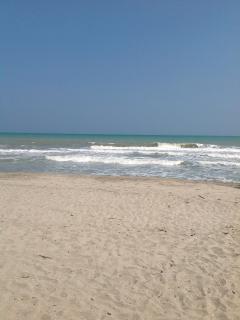Surf, neumáticos, cabalgada en la playa.