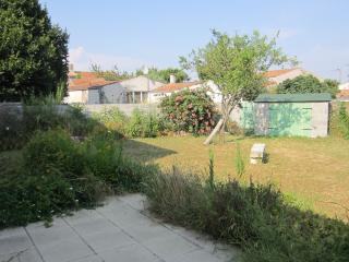 Enclosed garden with lawn