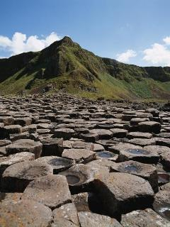 We are located 12 miles from the world heritage site the Giant's Causeway