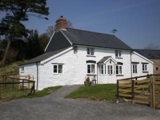 Blaenglanhanog Holiday Cottage, Caersws